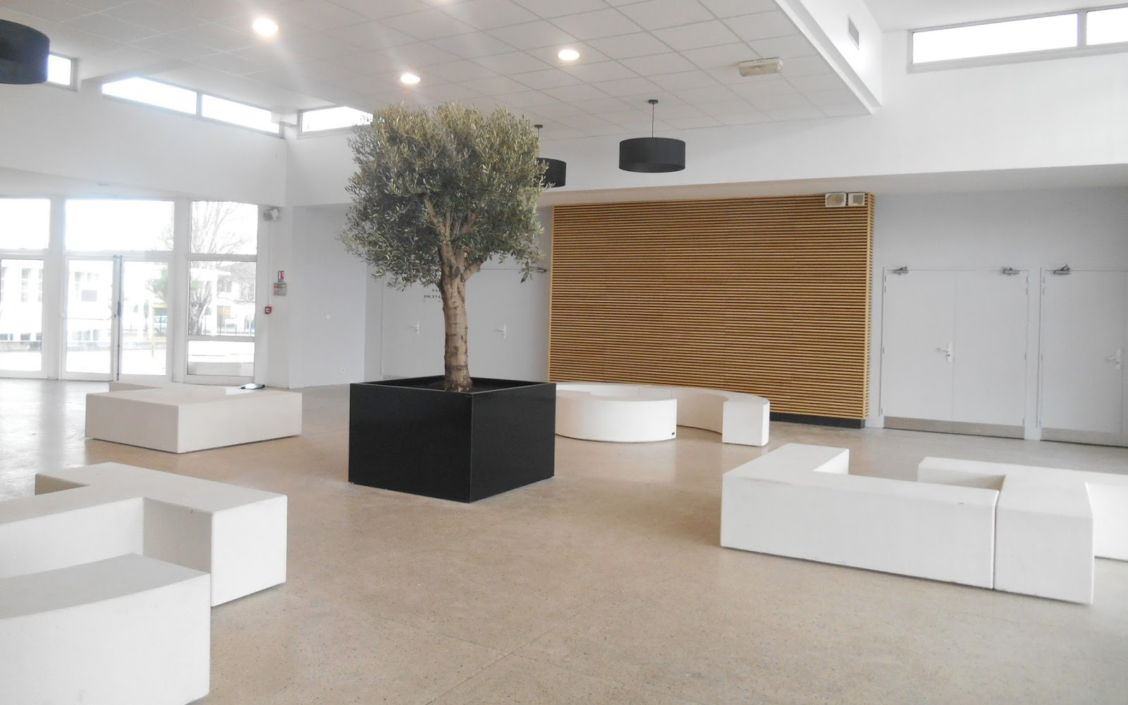 Tree tub for Indoor application - Image\'In - ATELIER SO GREEN : Bacs ...